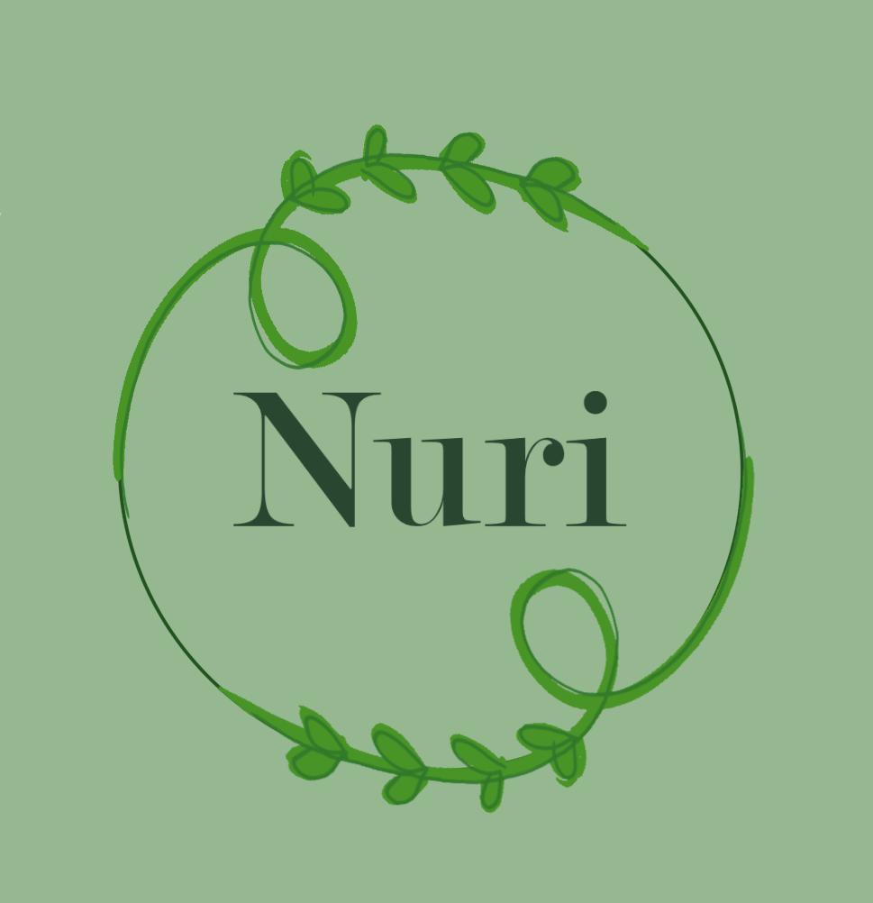 nurilogo3.2