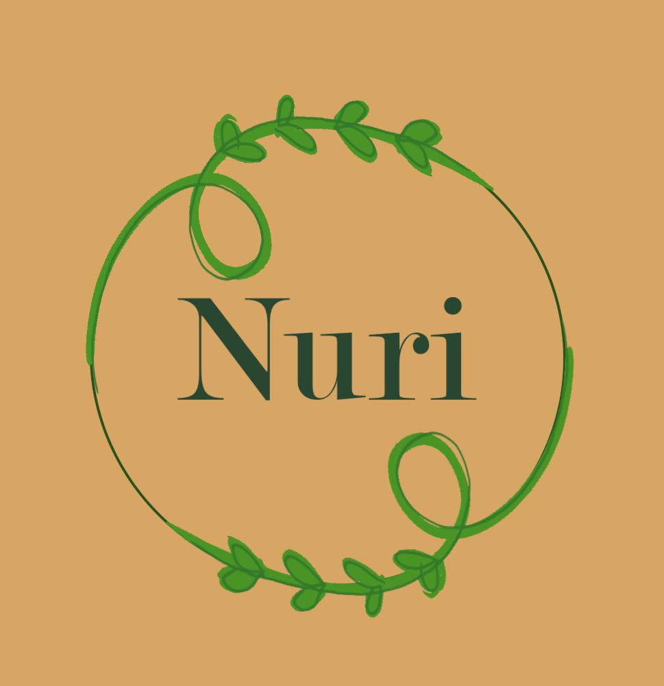 nurilogo3.3